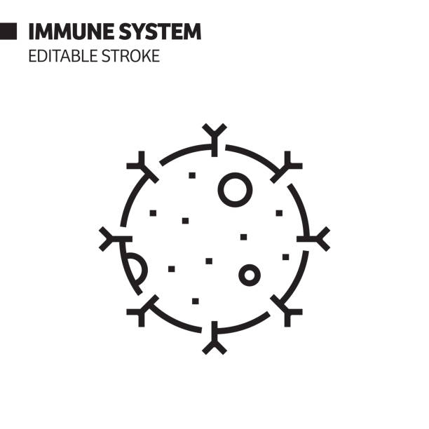 Immune System Line Icon, Outline Vector Symbol Illustration. Pixel Perfect, Editable Stroke. Immune System Line Icon, Outline Vector Symbol Illustration. Pixel Perfect, Editable Stroke. immunology stock illustrations