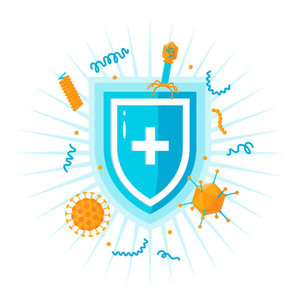 Immune system vector concept, simple colored icon Immune system concept. Medical shield surrounded by viruses and bacterium immune system stock illustrations