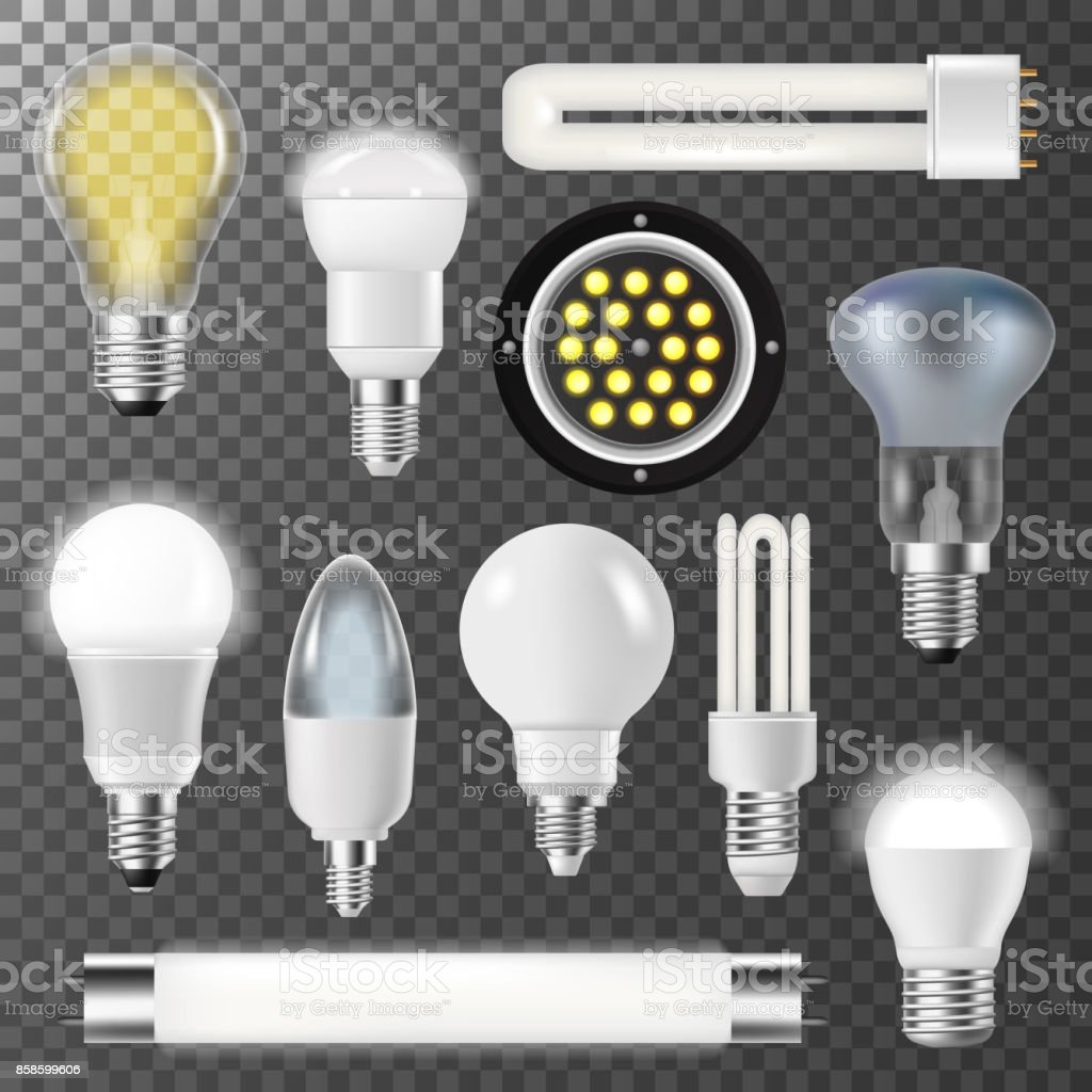 Incandescent lamps light bulbs fluorescent energy bright illuminated electrical glass vector illustration vector art illustration