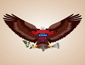 independence day america eagle holding plants arrows ribbon shield usa vector illustration