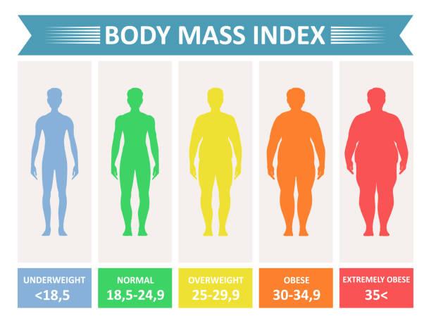 illustrazioni stock, clip art, cartoni animati e icone di tendenza di index mass body - obesity