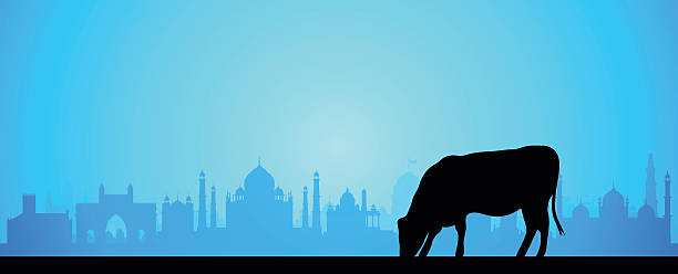 India (Buildings Are Complete and Moveable) India. All buildings are complete and moveable.  agra jama masjid mosque stock illustrations