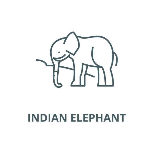 indisches elefanten-vektorzeilensymbol, lineares konzept, umrisszeichen, symbol - stammes tattoos stock-grafiken, -clipart, -cartoons und -symbole