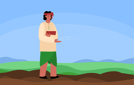 Indian farmer or peasant worker spreading seeds, flat vector illustration.