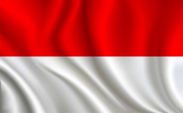 stockillustraties, clipart, cartoons en iconen met indonesië vlag achtergrond - indonesische vlag