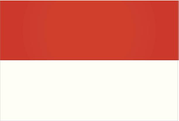 stockillustraties, clipart, cartoons en iconen met indonesia flag - indonesische vlag