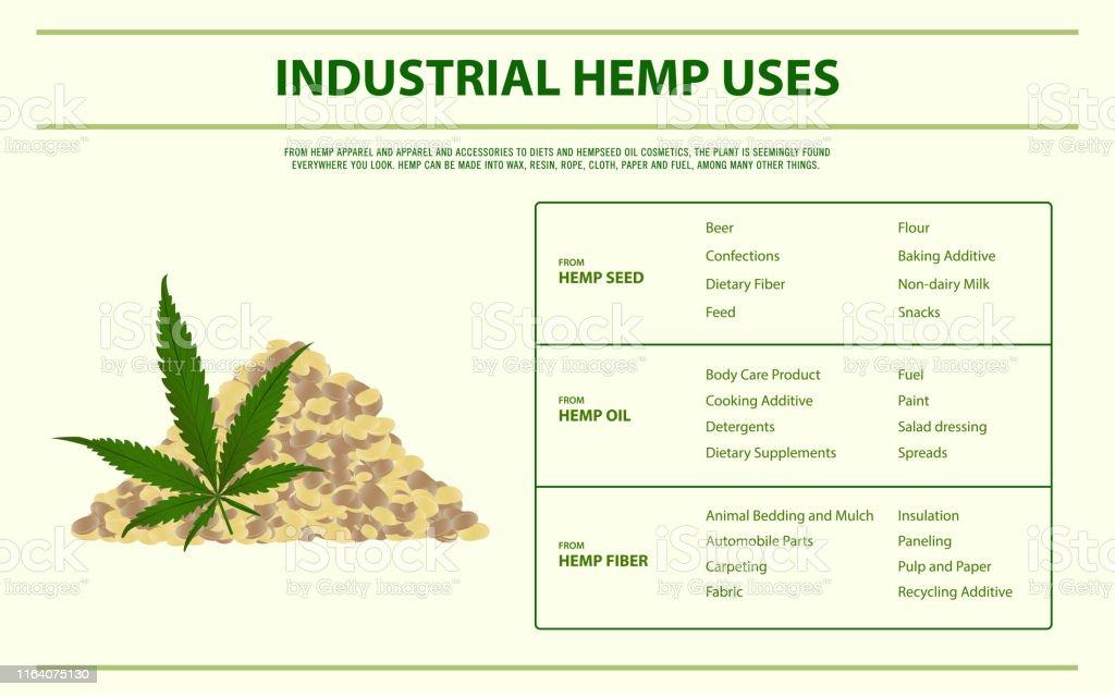 Industrial Hemp Uses Horizontal Infographic Stock
