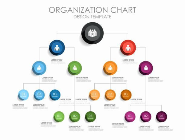 ilustraciones, imágenes clip art, dibujos animados e iconos de stock de plantilla de diseño de infografía con el lugar para sus datos. ilustración de vector. - infografías para diagramas de flujo