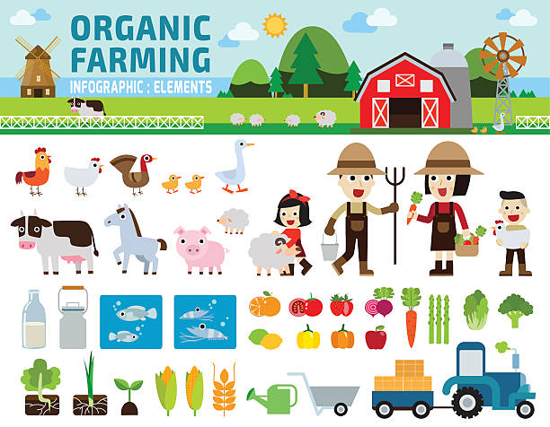 infographic, elements, icons, business - farm animals stock illustrations, clip art, cartoons, & icons