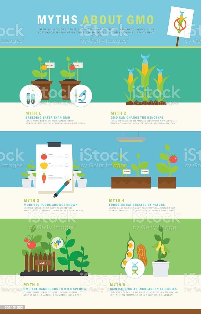 Infographic: myths about GMO. Colorful vector concept with illustrations and vector art illustration