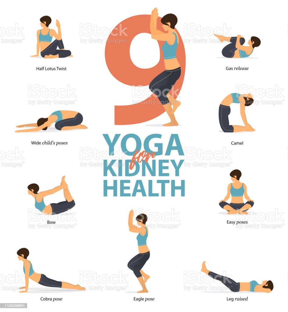 Infographic Of 41 Yoga Poses For Kidney Health In Flat Design Beauty Woman  Is Doing Exercise For Kidney Strength Set Of Yoga Postures Female Figures
