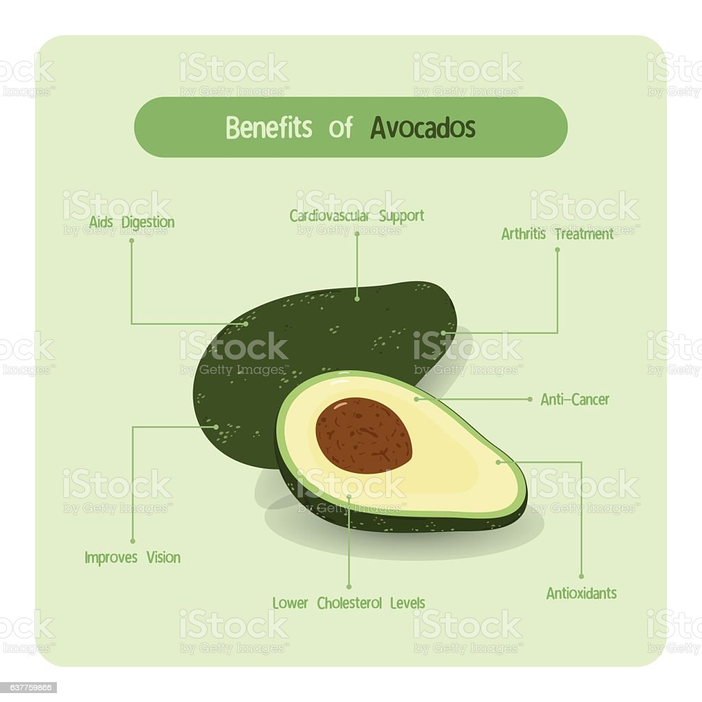Infographic of avocado benefits vector art illustration