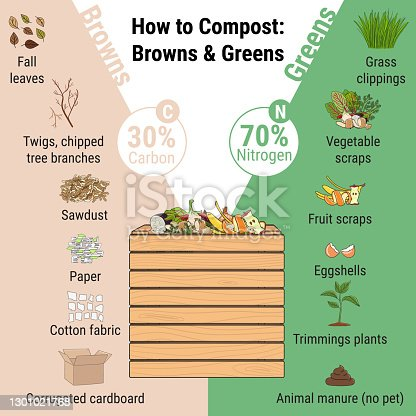 istock Infographic of garden composting bin with scraps. What to compost. Green and brawn ratio for composting. Recycling organic waste. Sustainable living concept 1301021768