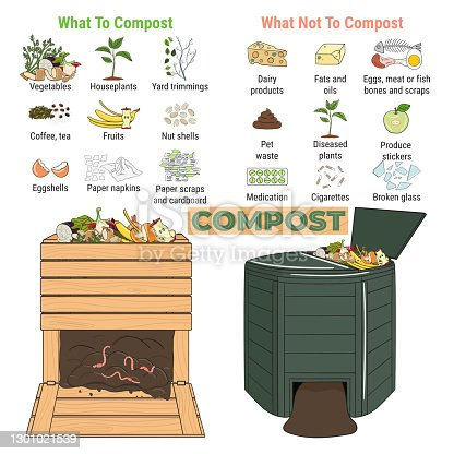 istock Infographic of garden composting bin with scraps. What to or not to compost. No food wasted. Recycling organic waste, compost. Sustainable living, zero waste concept 1301021539