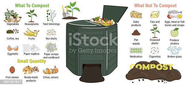 istock Infographic of garden composting bin with scraps. What to or not to compost. No food wasted. Recycling organic waste, compost. Sustainable living, zero waste concept 1301021617