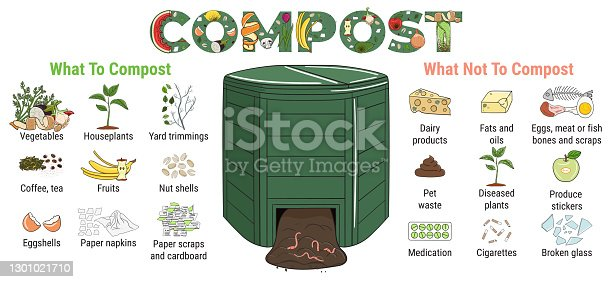 istock Infographic of garden composting bin with scraps. What to or not to compost. No food wasted. Recycling organic waste, compost. Sustainable living, zero waste concept 1301021710