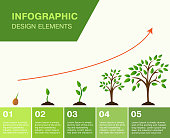Infographic-growing tree, the growth of Finance.