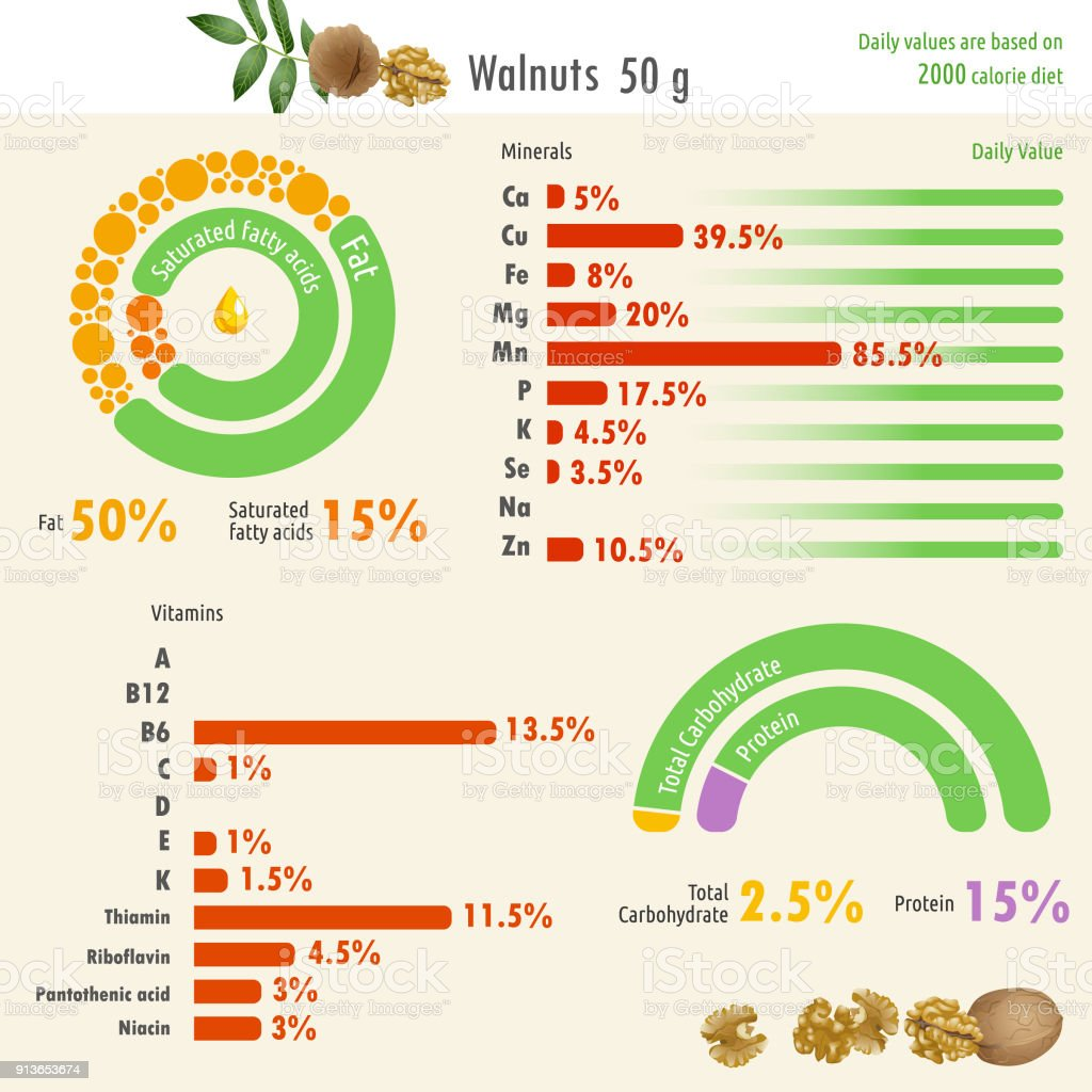Infographic of walnut nutritional value royalty-free infographic of walnut  nutritional value stock vector art