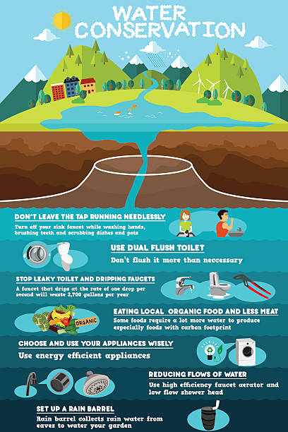 Infographic of Water Conservation vector art illustration