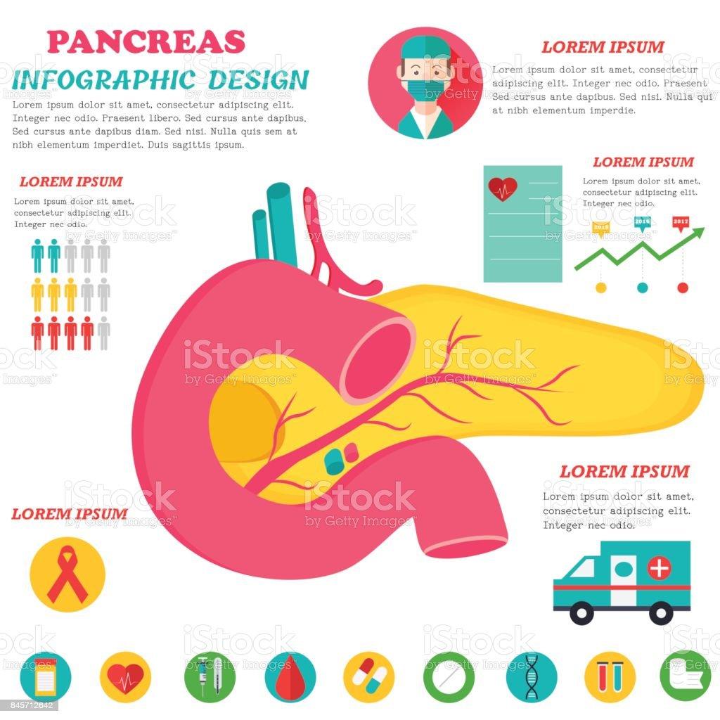 Ilustración de Cartel De Infografía Con Ilustración De Páncreas y ...