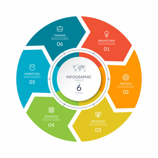 infographic process chart. cycle diagram with 6 stages, options, parts. can be used for report, business analytics, data visualization and presentation. - rower stock illustrations