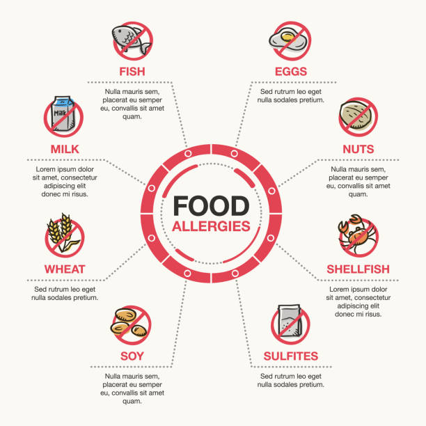 Infographic template for food allergies vector art illustration