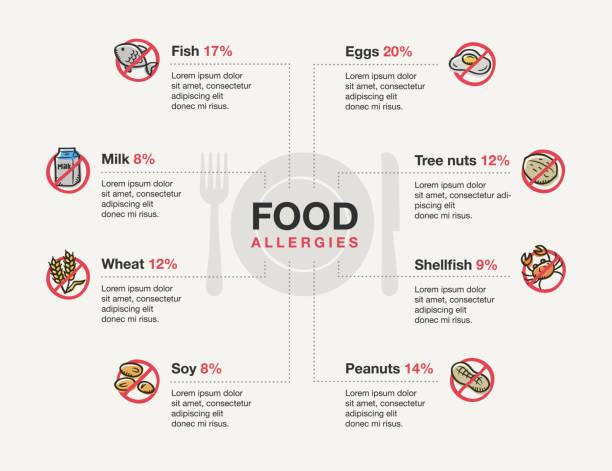 ilustraciones, imágenes clip art, dibujos animados e iconos de stock de plantilla infográfica para alergias alimentarias con iconos de doodle - alergias alimentarias