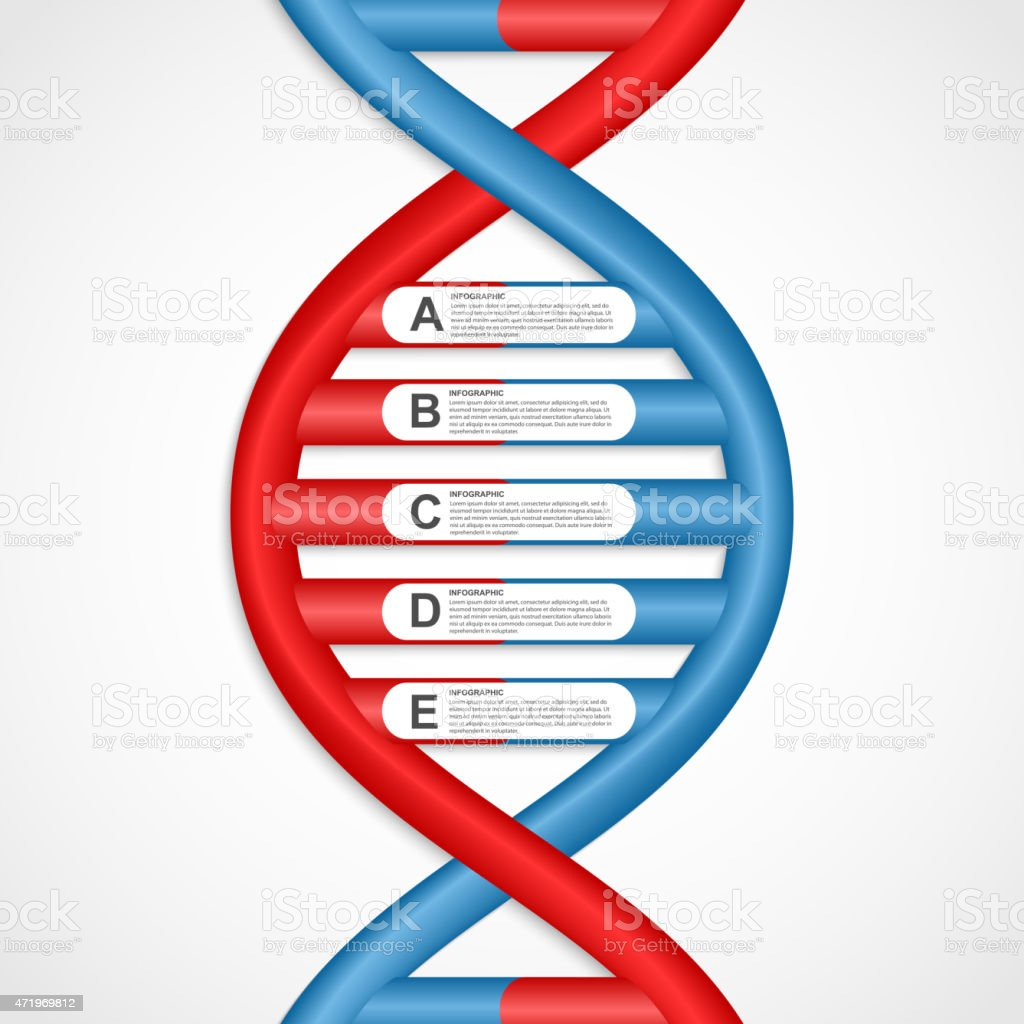 Infographics in the DNA helix form. vector art illustration