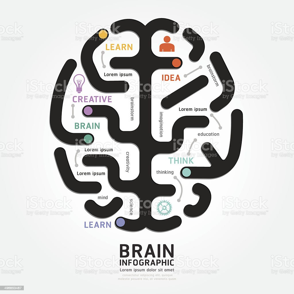 infographics vector brain design diagram line style template vector art illustration