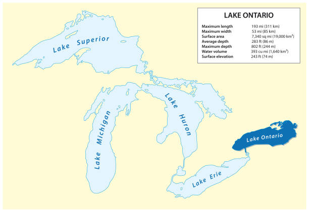information vector map of lake ontario in north america - lake superior stock illustrations, clip art, cartoons, & icons