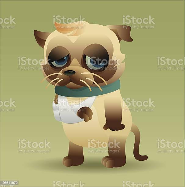 Injured Cat-vektorgrafik och fler bilder på Bandage