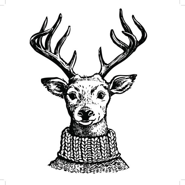 ink drawing of reindeer in knit sweater - reindeer stock illustrations