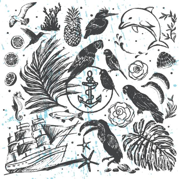 Ink hand drawn vector elements All about Tropical Sea Vacations Vector background. design elements ready for any creative use linocut stock illustrations