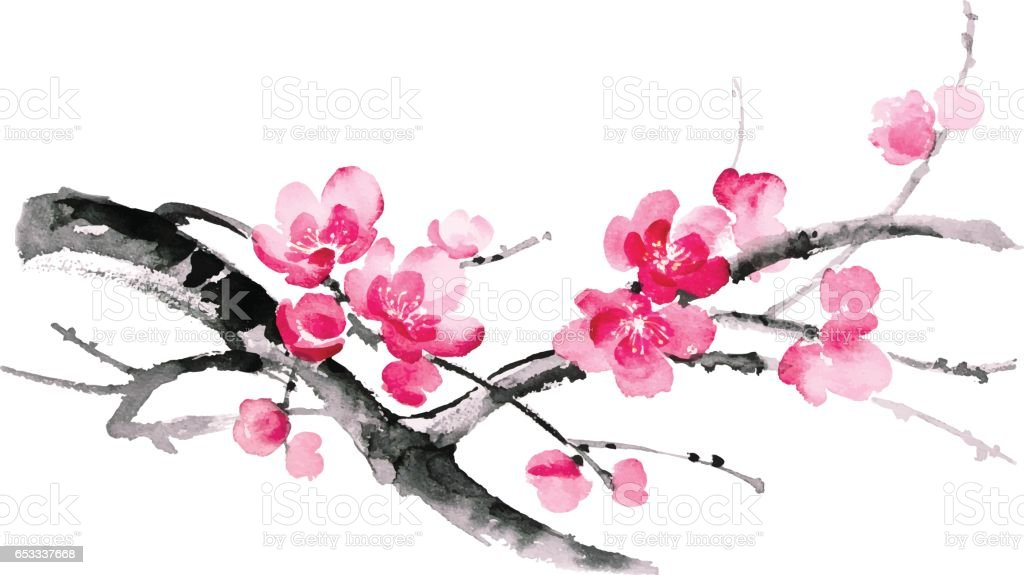 Ink illustration of sakura. Sumi-e style. vector art illustration