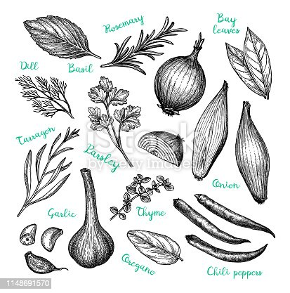 Сooking ingredients. Ink sketch isolated on white background. Hand drawn vector illustration. Retro style.
