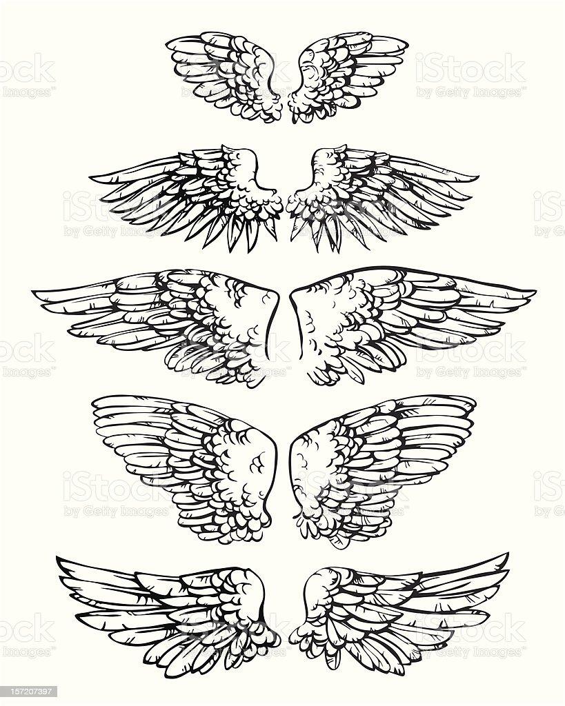 Ink sketch of heraldic wings vector art illustration