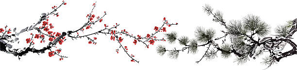 ink style winter sweet and pine tree ink style winter sweet and pine tree, eps10 file plum blossom stock illustrations