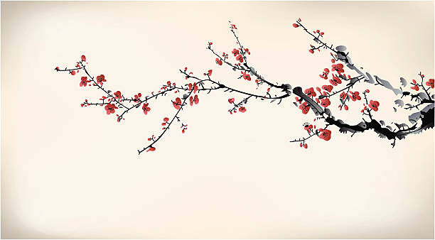 ink winter sweet ink winter sweet plum blossom stock illustrations
