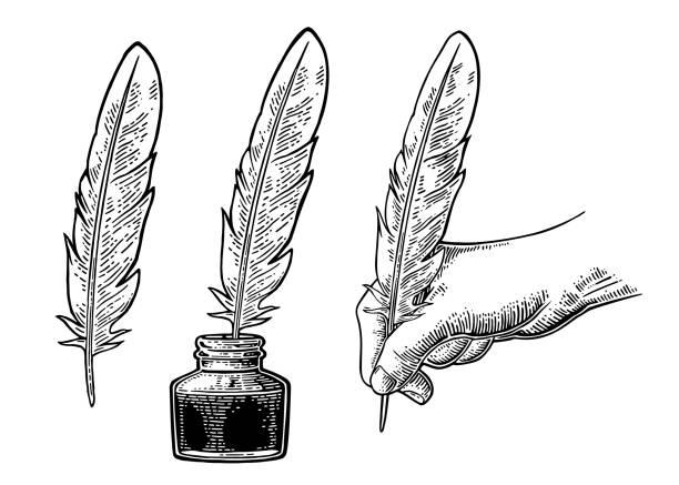 ilustrações de stock, clip art, desenhos animados e ícones de inkwell and female hand holding a goose feather. vector engraving - tinteiro