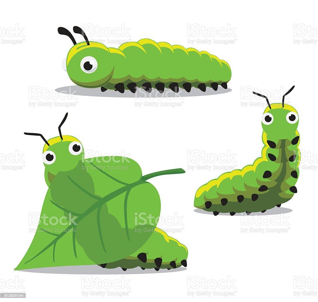 Insect Caterpillar Cartoon Vector Illustration vector art illustration