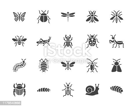 Insect flat glyph icons set. Butterfly, bug, dung beetle, grasshopper, cockroach, scarab, bee, caterpillar vector illustrations. Black signs for insects pest. Silhouette pictogram pixel perfect 64x64.