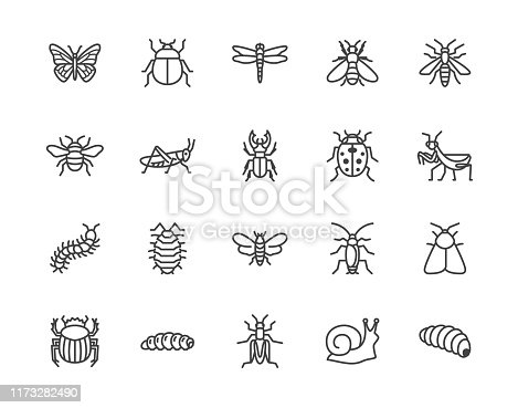 Insect flat line icons set. Butterfly, bug, dung beetle, grasshopper, cockroach, scarab, bee, caterpillar vector illustrations. Outline signs for insects pest. Pixel perfect 64x64. Editable Strokes.