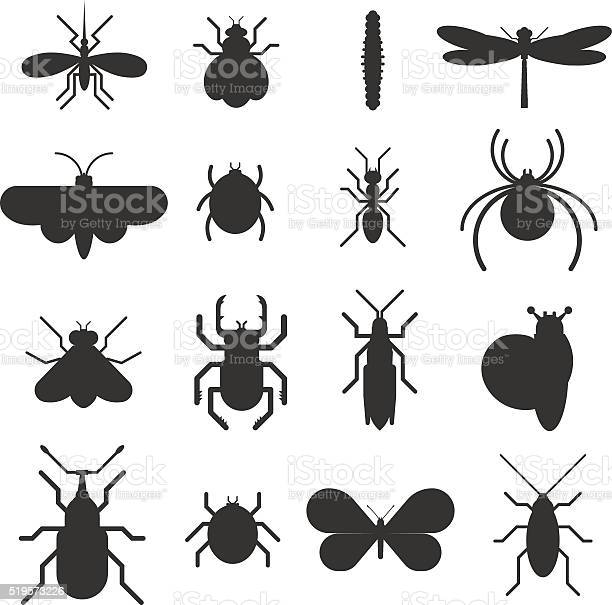 Insect icon black silhouette flat set isolated on white background vector id519573226?b=1&k=6&m=519573226&s=612x612&h=j96oxz 4xe30ybnkbrchw9b ajkk68ecamabznxsymm=