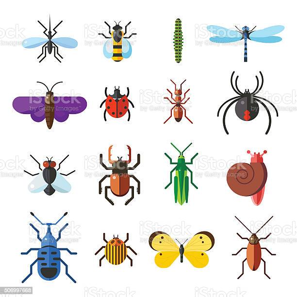 Insect icon flat set isolated on white background vector id506997668?b=1&k=6&m=506997668&s=612x612&h=xmxsp5qonh7xkzmtpxjg1xqdkyte8m0hl0jfpiuvwju=