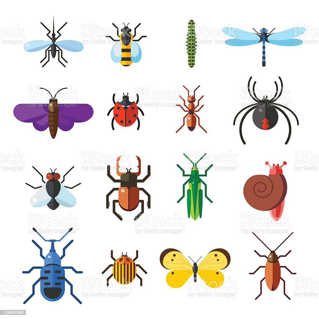 Insect icon flat set isolated on white background vector art illustration