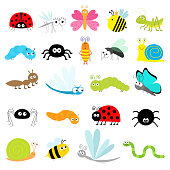 Insect icon set. Lady bug Mosquito Butterfly Bee Grasshopper Beetle Caterpillar Spider Cockroach Fly Snail Dragonfly Ant Lady bird Worm. Cute cartoon kawaii funny doodle character. Flat design. Vector
