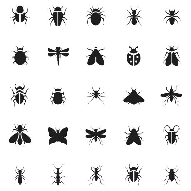 Insect icon set Insect icon set fly insect stock illustrations