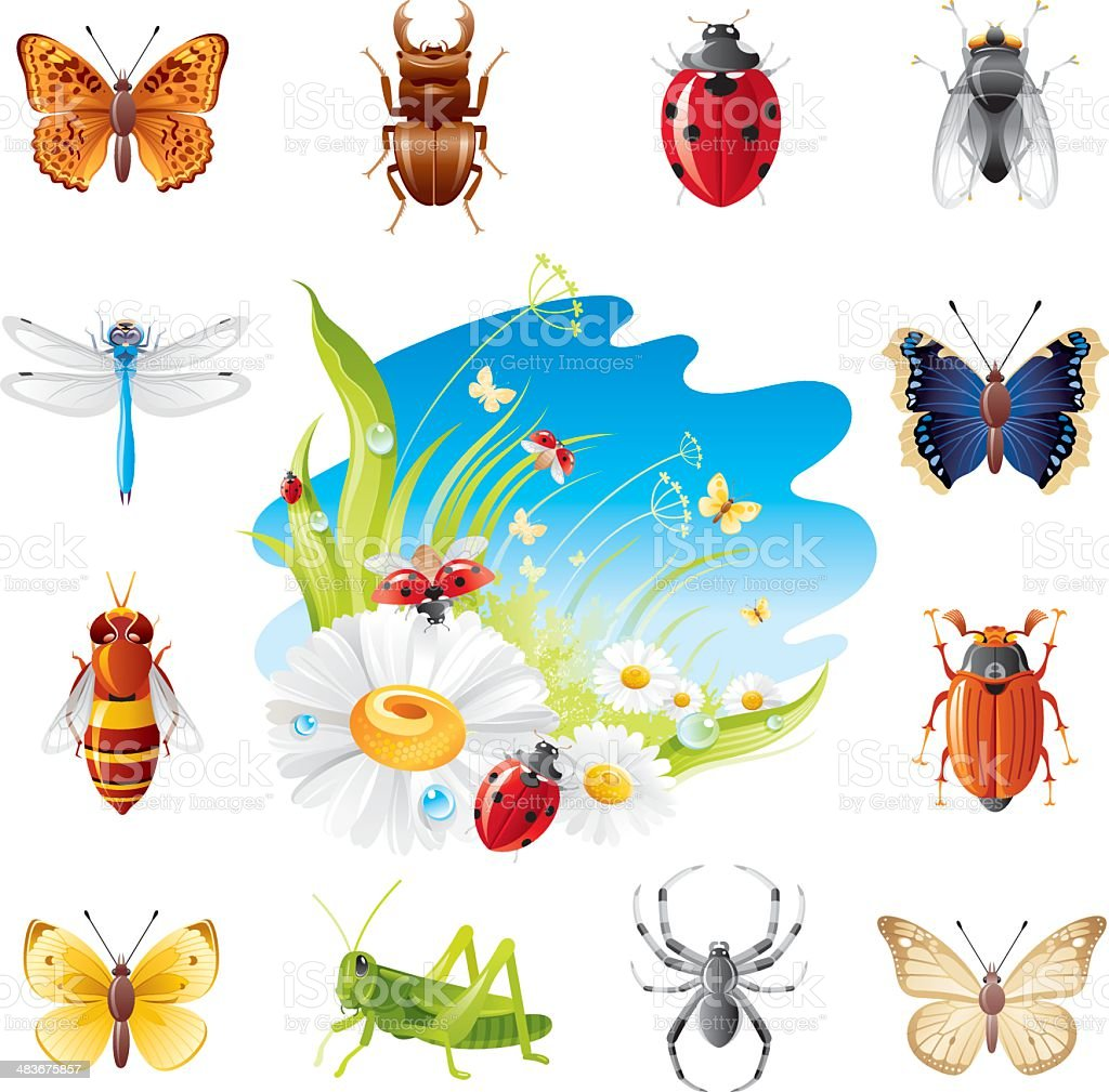 Insect icon set royalty-free stock vector art