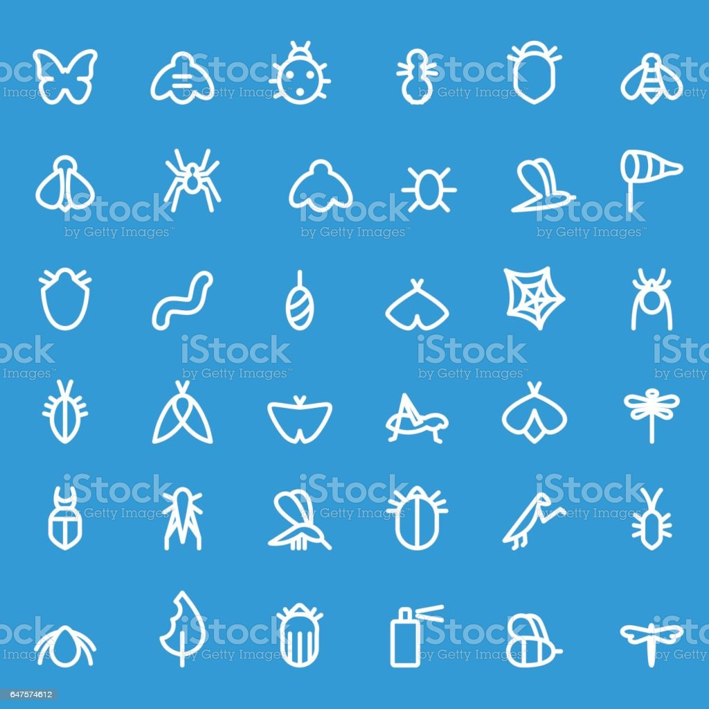 Insect icon set. vector art illustration