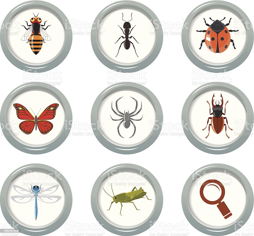 Insect icons set royalty-free stock vector art